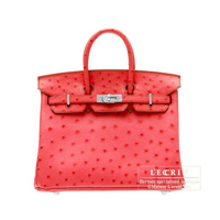 Hermes Birkin bag 25 Bougainvillier Ostrich leather Silver hardware