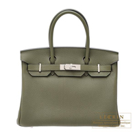 Hermes Birkin bag 30 Canopee Togo leather Silver hardware