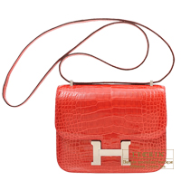Hermes Constance mini Bougainvillier Alligator crocodile skin Silver hardware