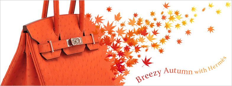 Breezy Autumn with Hermes
